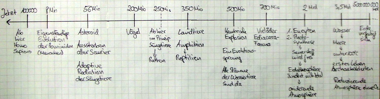Evolution Zeitstrahl